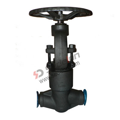 Forged steel globe valves