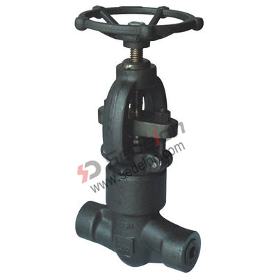 Socket Weld Forged Globe Valve